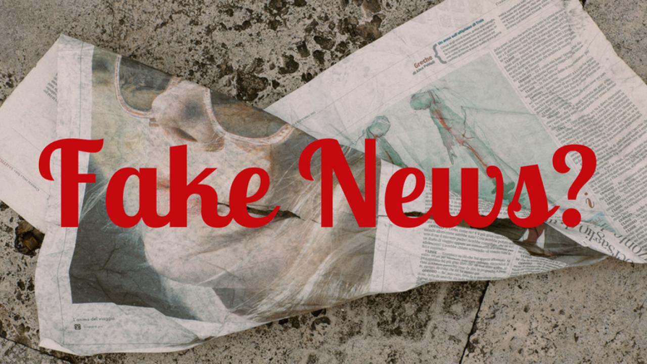 Fake-News-Bild