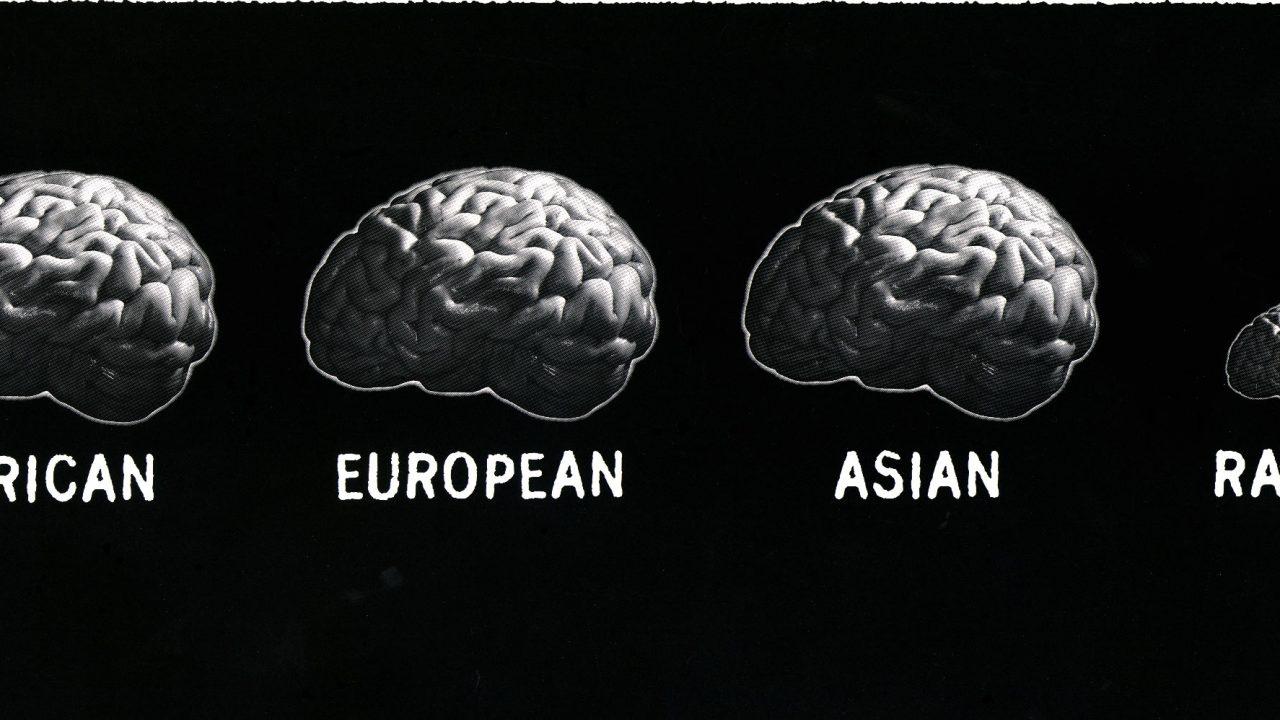 DHMD_Rassismus_Brains