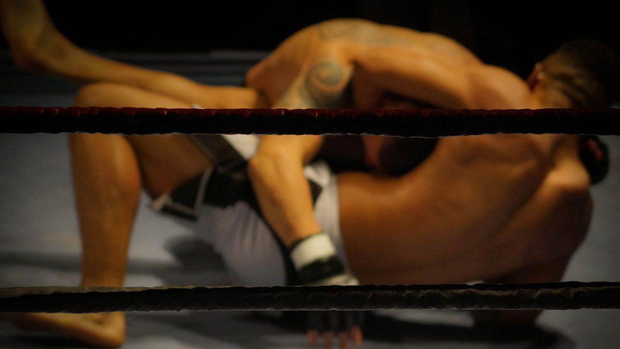 MMA Kampfsport wrestling-384652_1920