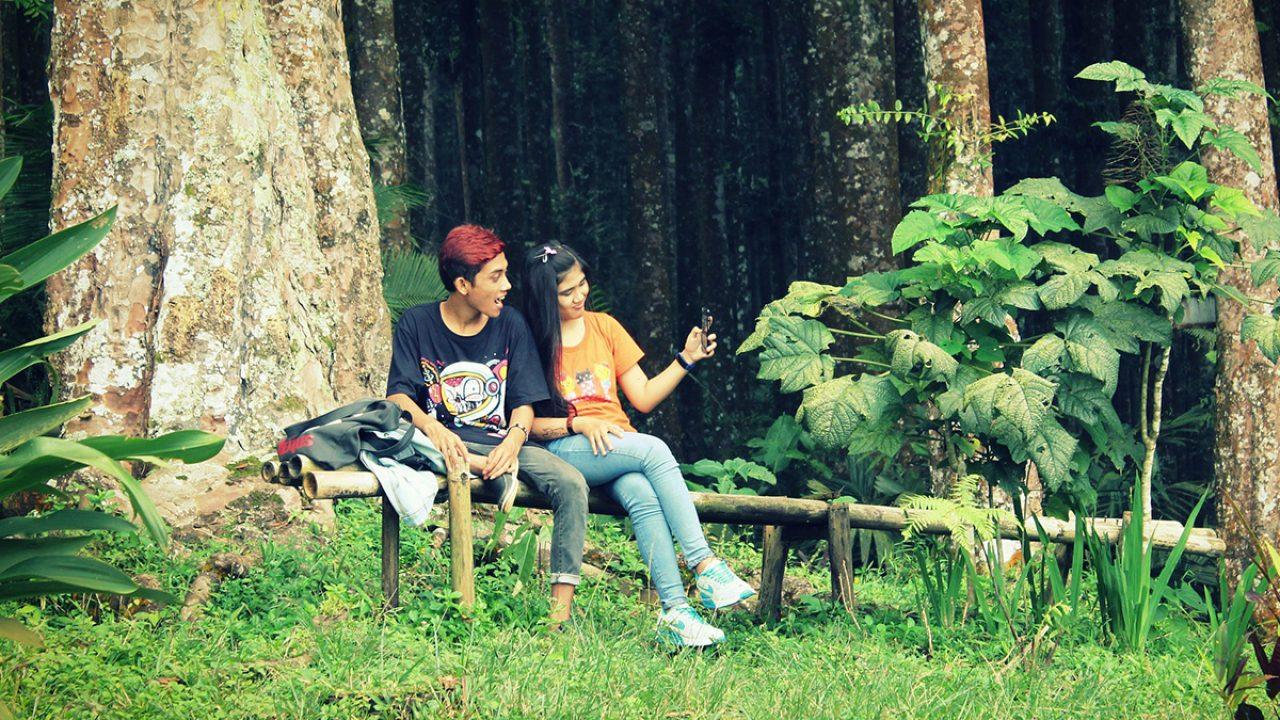 woods-1737684_1920