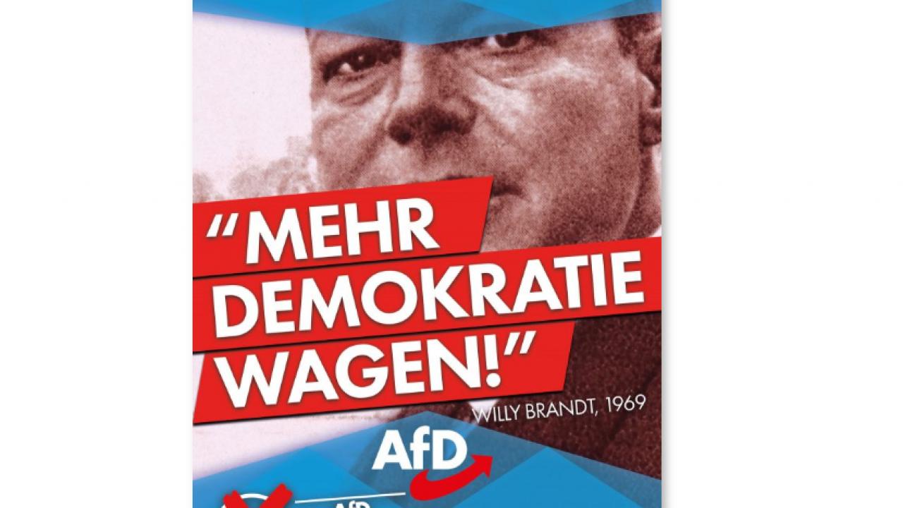 afd-direkte-demokratie